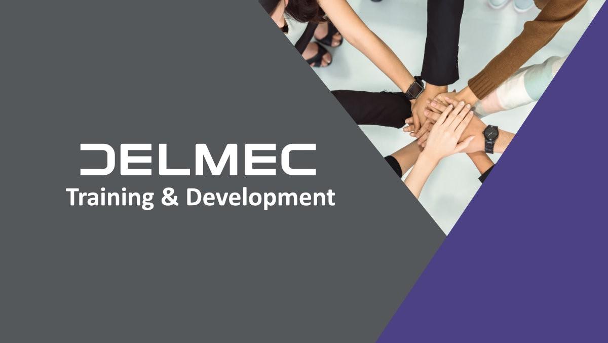 Training & Development at Delmec: Enter the Eurozone